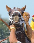 ahhhhhh-by-rock-and-racehorses3