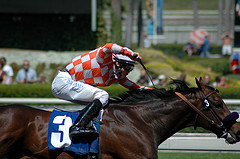 finish-line-at-santa-anita-park-by-rhetoricru