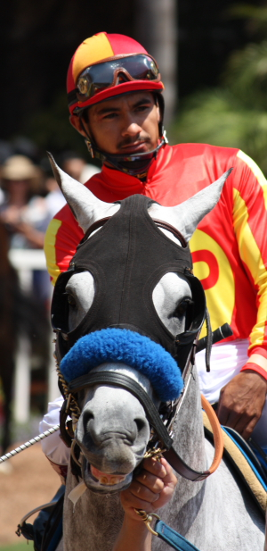 Pegram horse