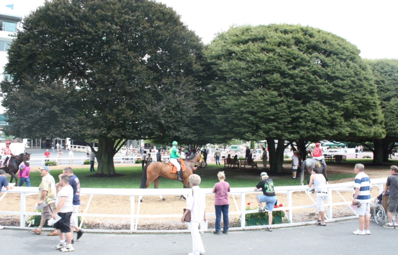 Monmouth Park may not run a meet with the quality of Saratoga, but the landscaping is top notch